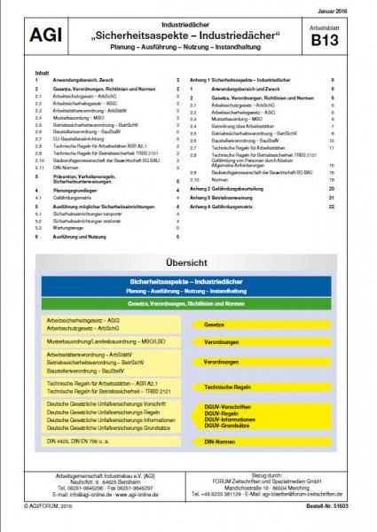 AGI-B13 Sicherheitsaspekte – Industriedächer